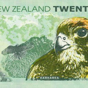 NewZealandPNew-20Dollars-2004-dkr_b
